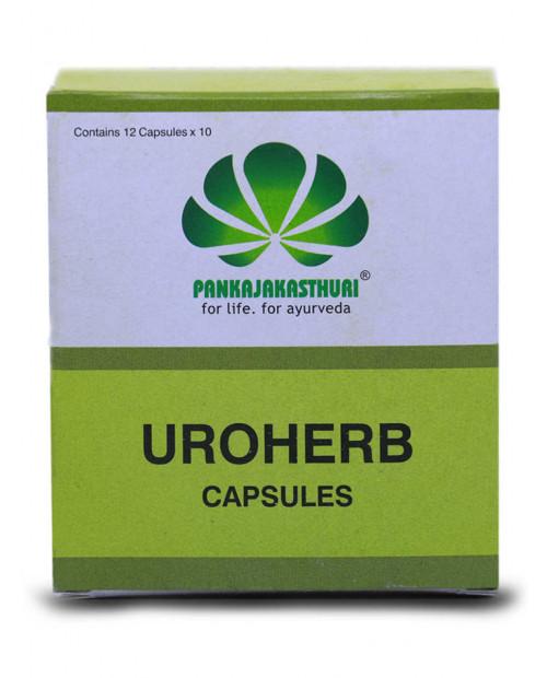 Pankajakasthuri Uroherb 120 Capsules